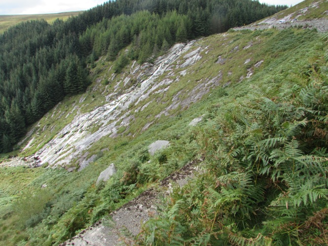 Low in the Wicklow Mountains